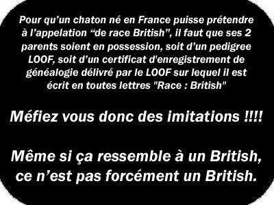 panneau__british