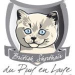 logo Puy en Laye